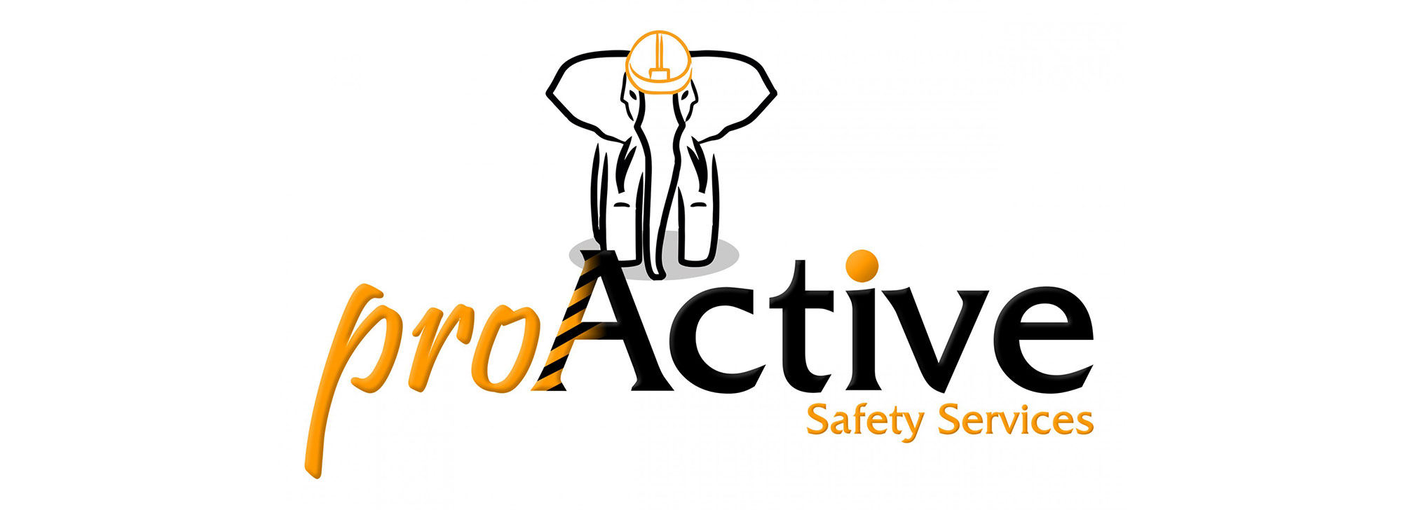 proActive Safety Services